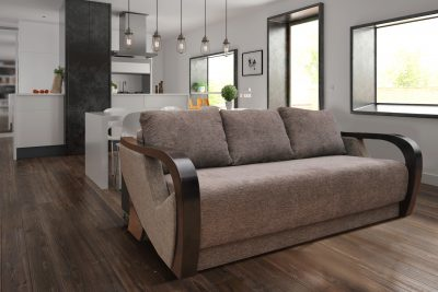 Modern Sofa Bed and storage